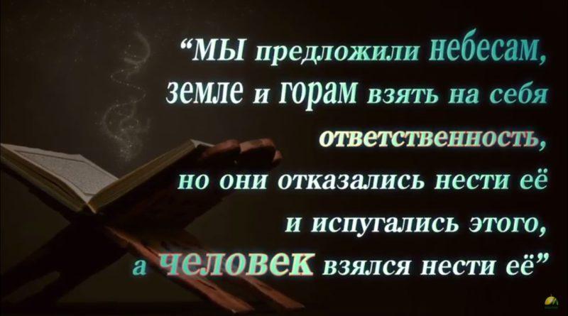 Человек | Ильдар Аляутдинов